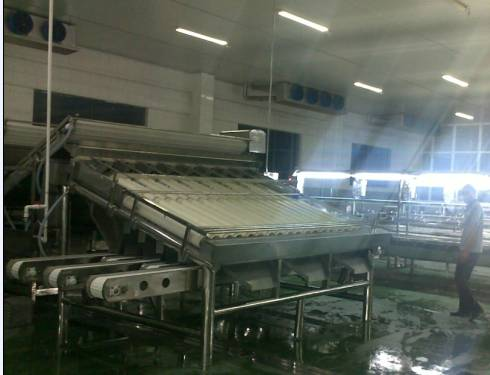 food_processing_equipment_4